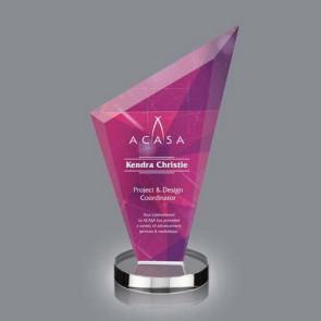 VividPrint Award - Condor 8