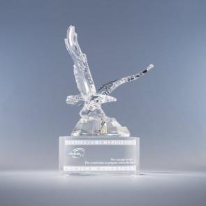 Soaring Eagle Award