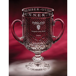 Diamond Cup Award (medium)