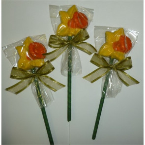 Fancy Chocolate Daffodil Flower Pop