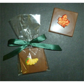 Autumn Single Chocolate Layered Square with Candy Coating