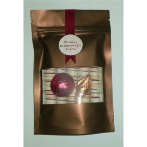 Chocolate Sea Shells with Chocolate Dipped Pretzels in Pouch