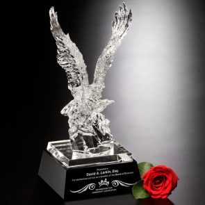 Journey Eagle Award  12