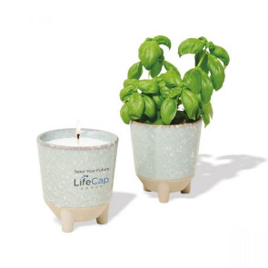Modern Sprout Glow & Grow Live Well Gift Set - Blue Green: Herb Garden w/ Basil Seeds