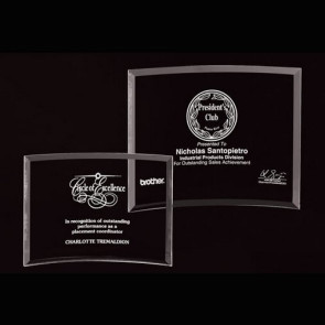 Bent Glass Award  - LG