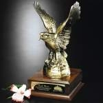 Custom Engraved Eagle Awards